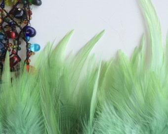 VIVACE  SADDLE,  , Celery Green, V - 11