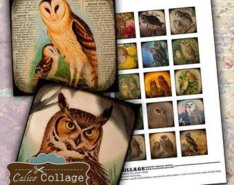 Majestic Owls, Digital Collage, Collage Sheet, Square Images, Owl Collage Sheet, Vintage Birds, Bird Collage Sheet, Images for Pendants