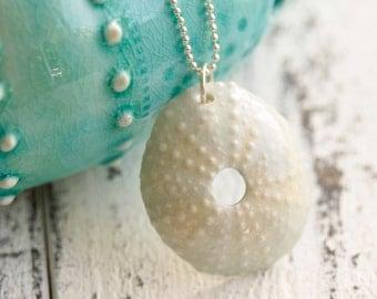 pale blue Sea urchin pendant, porcelain