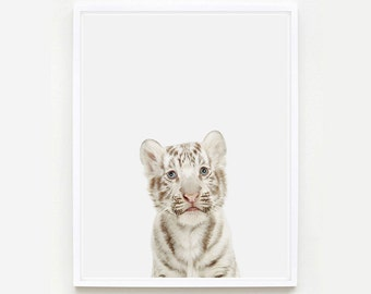 Baby Animal Nursery Art Print. Baby White Tiger Little Darling. Animal Wall Art. Animal Nursery Decor. Baby Animal Photo.