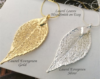 Real Laurel Evergreen Leaf, 24K gold or Sterling Silver Dipped, cobra chain, real leaves jewelry Natures Leaves
