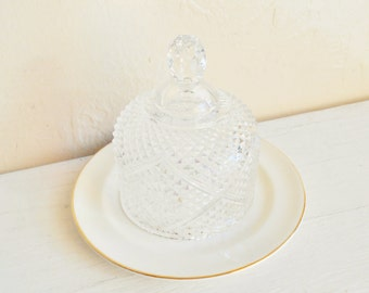 Small Curvy Clear Glass Cloche Decorative Dome