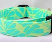 Dog Collar: Aqua