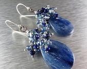 BIGGEST SALE EVER Kyanite with Lapis Lazuli Sterling Cluster Earrings