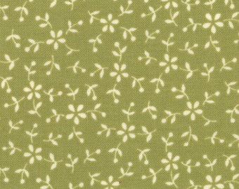 Sassy 1 & 1/4 yards Remnant 17648-15 Green