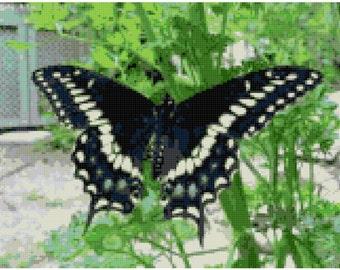 Swallowtail PDF Cross Stitch Pattern