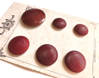 Vegetable Ivory Antique Buttons on Original Card - Early 1900s Edwardian Wine Burgundy for Jewelry Beads Sewing Knitting Tagua Nut