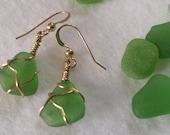 Kelly Green Beach glass Earrings #1