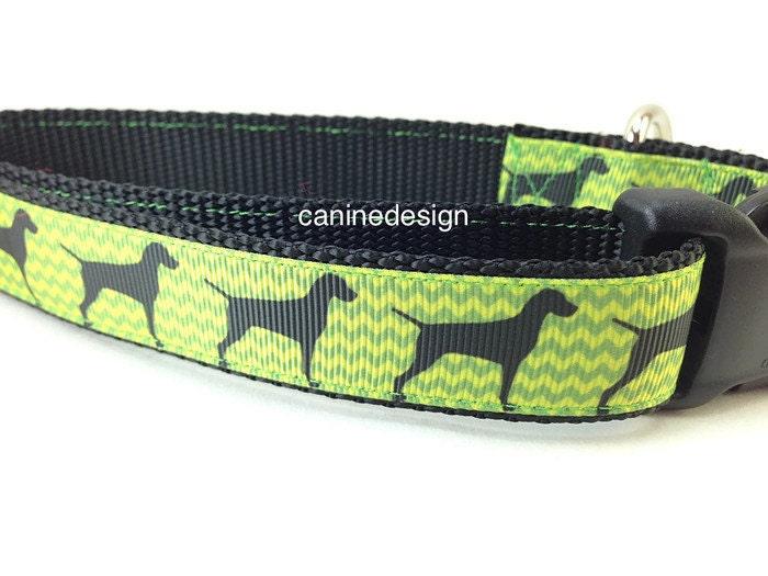 Dog Collar Vizsla Poin...