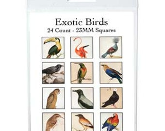 free shipping in UK - Collage Sheet with 24 Exotic Birds, square 23mm