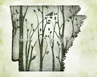 5 x 7 Arkansas State Art, Dark Green Wall Decor, Arkansas Wall Art Print, Arkansas Print, Arkansas Art Print, Home Decor  (219)