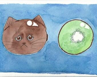 Kiwi Kitten