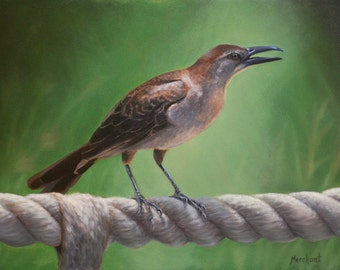 Original Oil Painting Bird on a Rope - Boat-tailed Grackle 9x12 Linda Merchant Fine Art Hand Painted Oil Painting Wildlife Bird OOAK