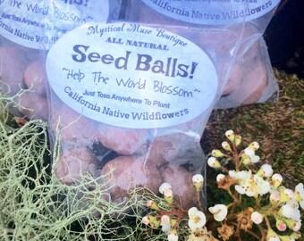 20 Seed Balls!