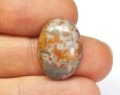 Natural Fancy Jasper Oval Cabochon - 20.0 x 14.8 x 5.3 mm - 12.2 ct - 160725-03