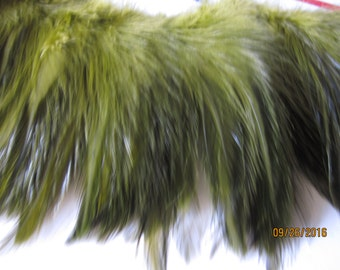 "Selling Out 25 "" of OLIVE Strung Rooster HACKLE feathers - individual feather about 4.5"" long"