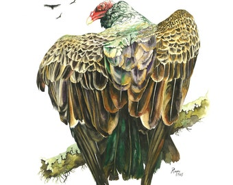 """Limited Edition GICLEE Print / """"Sun Worship"""" / Watercolor Painting of a Turkey Vulture"""