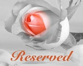 Reserved listing for Hadley Thom