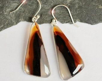 Montana - Beautiful Montana Agate Drop Sterling Silver Earrings