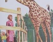 "Original Vintage School Classroom Poster Print - Circa 1966 - Giraffes - 9"" x 12"""