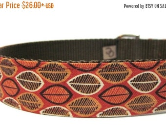 BIG SALE Orange and Brown Pumpkin Seeds Dog Collar