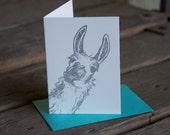 Llama Card, letterpress printed hand drawn eco friendly