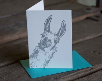 Llama Card, letterpress printed hand drawn eco friendly