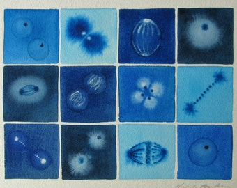 Cell Division Blue 14 - Original Watercolor Painting