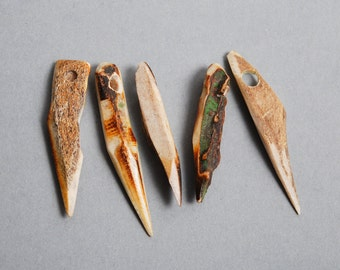 Set of 5 Genuine wild deer horns with hole, pendants
