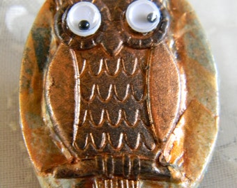 Googly Eyed Owl Oval-Shaped Polymer Clay Brooch