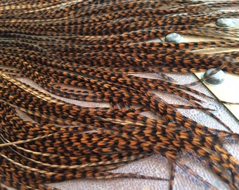 XL Brown Grizzly Feathers Loose Feather Extensions Brown Grizzlies Hair Feathers 6-12pcs Accessory Plumes