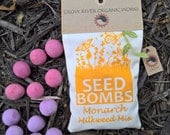 Milkweed Seed Bombs for Monarch Butterflies - for Winter Planting!