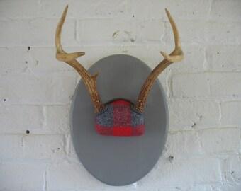 Vintage Mounted Deer Antlers - Repurposed - Plaid