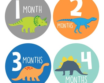 Baby Boy Month Stickers, Monthly Baby Stickers, Milestone Baby Month Sticker, Monthly Bodysuit Dinosaurs ( Dinos )