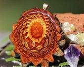 Natural Third Eye Pinecone Pendant
