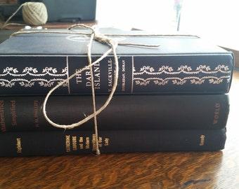 Decorative Black / Dark Book Bundle including The Dark Iskand Vintage Books