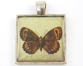 Butterfly Pendant - Art Collage Pendant Insect Charm Rust Brown Aqua Jewelry Resin Nature Picture Pendant