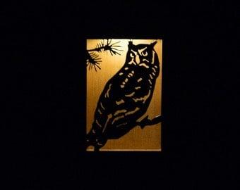 Owl solar light box