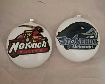 School logo,sports mascot, business logo, company logo, hand painted ornaments, glass disks