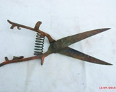 Grass Trimmers, vintage clippers, antique yard tools, old iron tools, bush trimmer.....