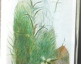 Turtlehead Flower with Red-bellied Snake Blank Prairie Art Note Card