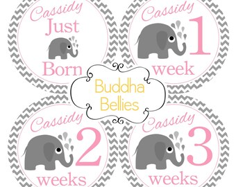 Pink Chevron and Elephants Newborn Baby Stickers - Includes BABY'S NAME - Just Born Sticker plus Weeks 1, 2 and 3 Stickers - Month Stickers