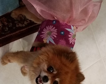 Tinkerbell Dress for Small Dog