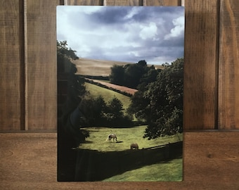 "Somerset, England---A photograph of the English countryside infused onto a 8x12"" high-gloss metal plate"