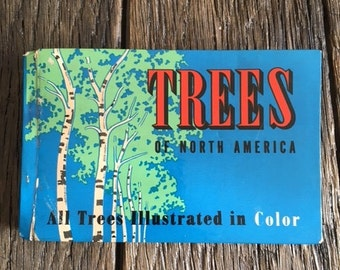 Vintage Book Trees Of North America Full Color Illustrated Guide