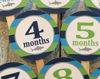 PREPPY SHARK 1st Birthday Photo Clips Banner Newborn - 12 months - Green Blue - Party Packs Available