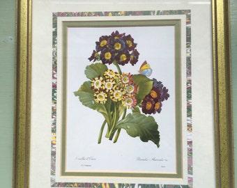 Vintage botanical print picture framed 8 x 10