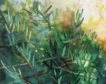 Olive Grove-- Modern Art