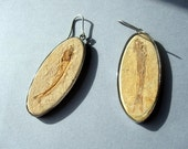 Awesome fossilised fish Earrings.