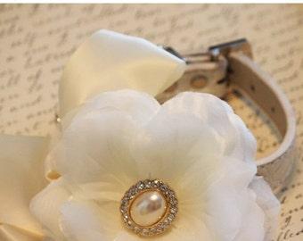 Ivory wedding dog collar, Ivory Wedding accessory, Ivory Floral dog collar, Flower with pearl and Rhinestone